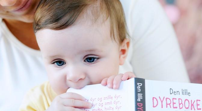 Näin luet 8 kuukauden ikäiselle lapselle